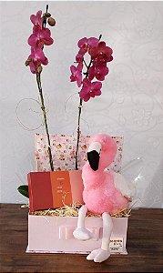 Orquídea com Pelúcia e Sabonetes Natura