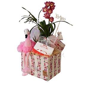 Orquídea com Pelúcia e Raffaello