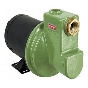 Bomba Autoaspirante Schneider MBA-XL 1 CV monofásica 110V/220V sem capacitor