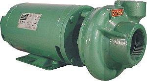 Bomba Monoestágio Thebe THB-13 1,5 CV trifásica 220V/380V