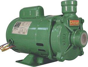 Bomba Thebe TH-12 AL 1/2 CV Monofásica 220V WPUMP