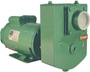 Bomba Thebe Autoescorvante AEX-1 2,0CV - 127/220V Monofásica