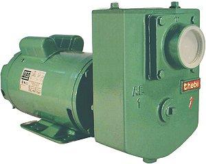 Bomba Thebe Autoescorvante AEX-1 1,5CV - 127/220V Monofásica