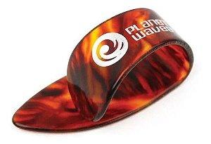 Dedeira Shell Lrg 5 Csh 65 Planet Waves