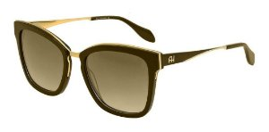 Óculos De Sol Ana Hickmann Ah9262 T01 Marrom / Dourado