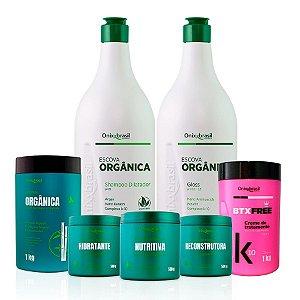 PROMOÇÃO Escova progressiva orgânica ; 1 creme de 1 litro , 1 shampoo de 1 litro, mais 1 mascara de tratamento de 1 kg, mais 1 BTX FREE de 1 kg , mais 1 kit Cronograma Orgânico , contendo 3 mascaras de  500 g cada , hidratação, reconstrução e nutrição!
