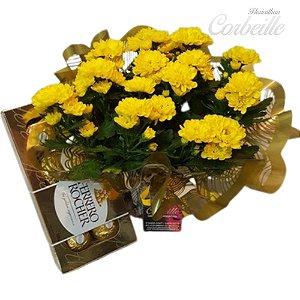 Margaridinha Amarela Plantada com Ferrero Rocher 8 und.