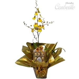 Orquídea Chuva de Ouro com Caixa de Bombons Ferrero Rocher 12 Unidades