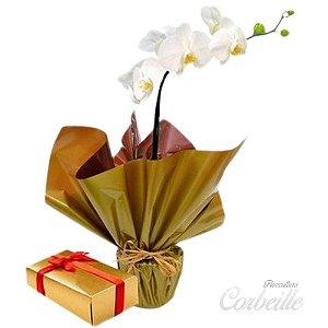 Orquídea Branca com Caixa de Bombons Sortidos