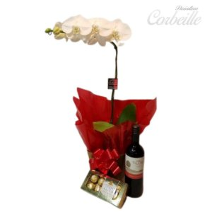 Orquidea Branca com Caixa de Bombons Ferrero Rocher 8 unidades e Vinho Tinto Importado