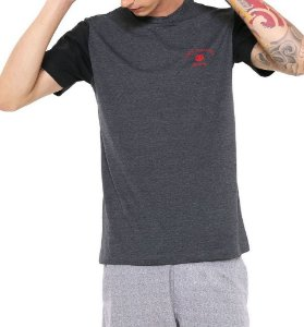 Camiseta Element Americana