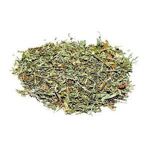 Absinto (Artemisia absinthium) - 20 gramas de folhagem triturada