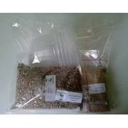 Kit de cultivo de Psilocybe cubensis Austrália