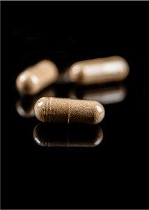 Psilocybe cubensis TKSSS - 2 gramas de cogumelos desidratados em cápsulas