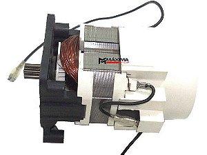 Motor Hidrolavadora Tekna HLX150 / HLX1501 HC9650C - 110V