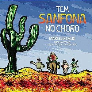 TEM SANFONA NO CHORO - Marcelo Caldi
