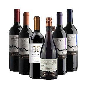 Kit com 6 Vinhos Tintos Ventisqueiro 750ml