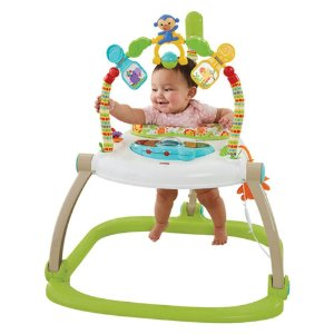 Jumperoo Floresta Encantada Fisher-Price