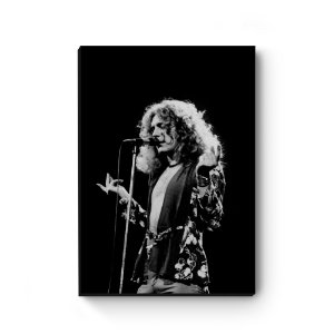 Quadro decorativo MDF Robert Plant