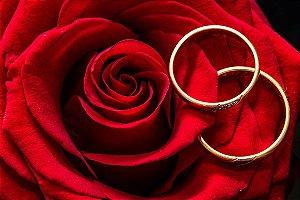 Painel de Festa em Tecido Sublimado 3d Rosas e Anéis