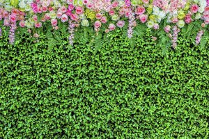 Painel de Festa em Tecido Sublimado 3d Cortina Muro Inglês