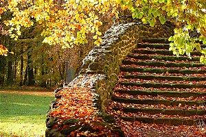 Painel de Festa em Tecido Sublimado 3d Escadaria na Floresta