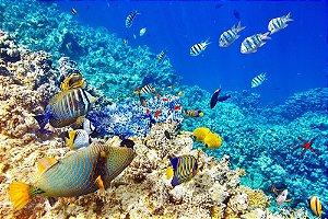 Painel de Festa em Tecido Sublimado 3d Corais Fundo do Mar