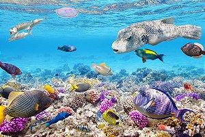Painel de Festa em Tecido Sublimado 3d Peixes Fundo do Mar