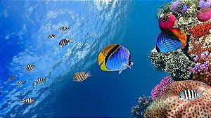 Painel de Festa em Tecido Sublimado 3d Peixes Coloridos