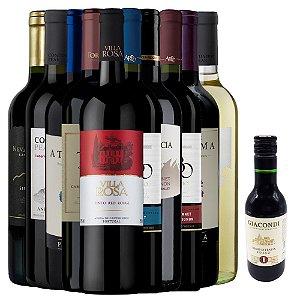 Kit de 10 Vinhos + Vinho Italiano Giacondi Rosso Tinto 187ml