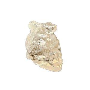 Crânio com Serpente em Cristal Quartzo Transparente 215gr