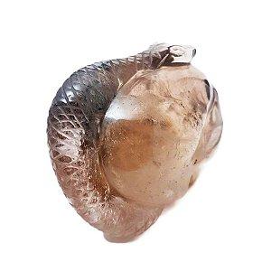 Crânio em Quartzo Rutilado com Serpente 975gr