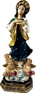 Nossa Senhora da Conceição resina 17cm altura