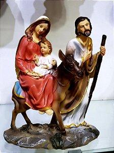 Nossa Senhora do Desterro 20 cm