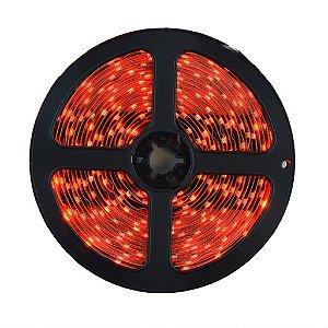 Fita LED 3528 Vermelha 5 Metros IP65 - À prova d'água - 24W