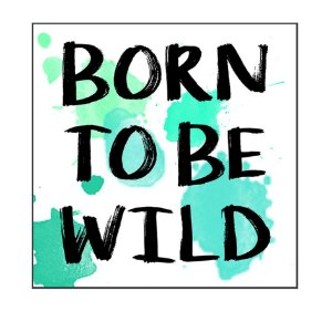 QUADRO DECORATIVO BORN TO BE WILD