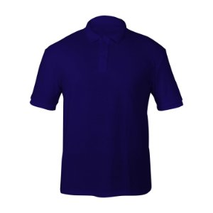 Kit 10 peças - Camiseta Polo Piquet Royal Masculina
