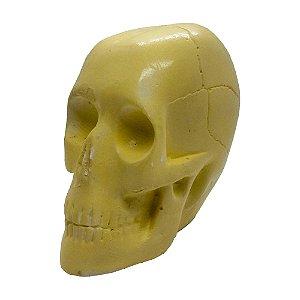 Crânio Amarelo 10cm de Gesso