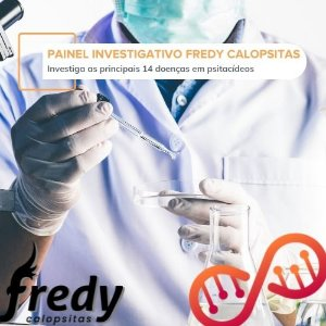 Painel Investigativo Fredy Calopsitas