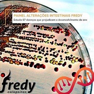 Painel Alterações Intestinais Fredy Calopsitas
