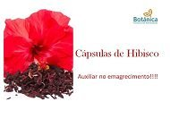 Hibiscus 300mg 60 cápsulas