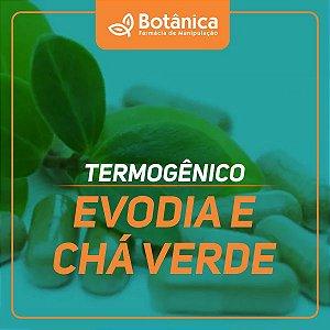 Termogênico Evodia e Chá verde 60 cápsulas