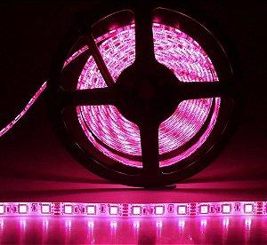 Fita LED 5050 Rosa em rolo adesivo com 5 metros 12V Flexível IP65 Siliconada