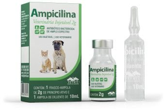 Ampicilina Vet Antibiotico Injetavel 2g Vetnil