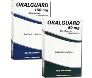 Oralguard Antibiótico com 14 Comprimidos