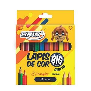 Lápis de Cor 12 Cores Jumbo Curto BRW