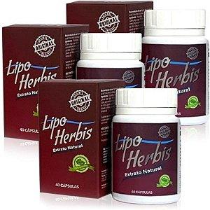 Lipo Herbis 40 Cáps - Kit 3 unidades