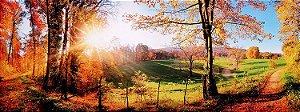 Tela Impressa Tarde de Outono