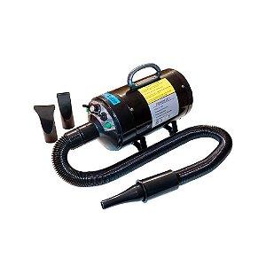 Secador e Soprador Powerpet Lizze 127 V