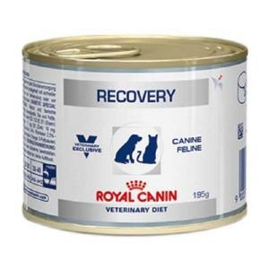 Ração Royal Canin Lata Canine e Feline Veterinary Diet Recovery Wet 195 Gr